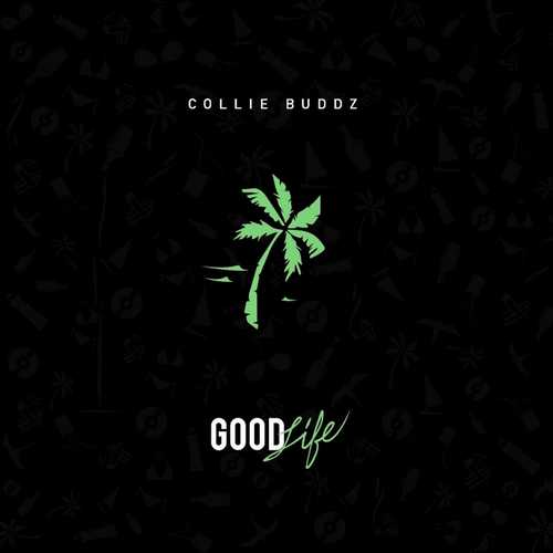 Collie Buddz Good Life Single Reggae Vibes