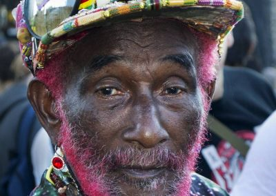 Lee Perry Reggae Geel 2016