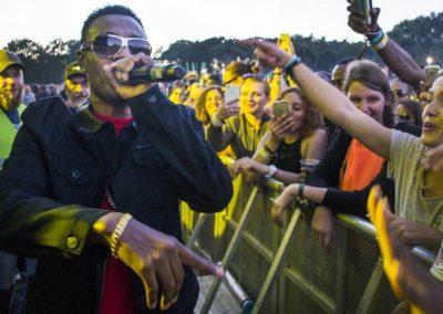 Wayne Wonder Reggae Geel 2016