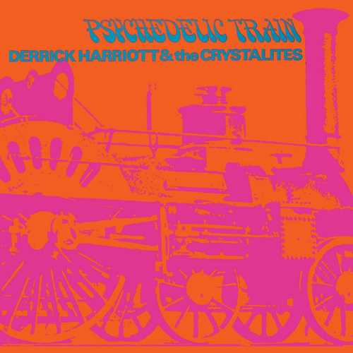 Derrick Harriott And The Chosen Few Psychedelic Train - Psychedelic Train
