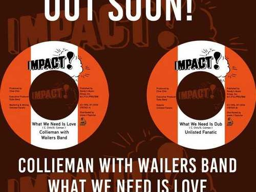 Collieman on original Wailers Band riddim