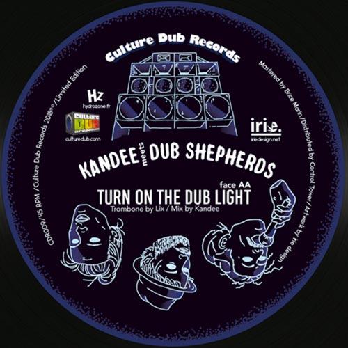 Turn On The Dub Light