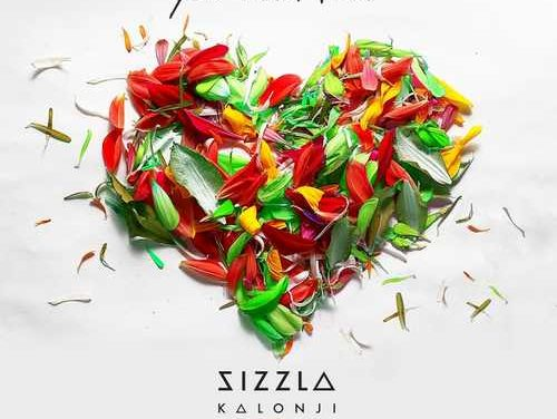 New Sizzla single