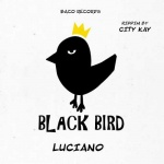 Luciano – Better Tomorrow