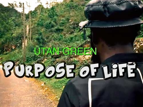Purpose of Life – Utan Green | New Video