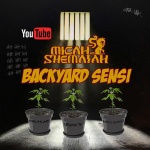 Micah Shemaiah – Backyard Sensi | New Video