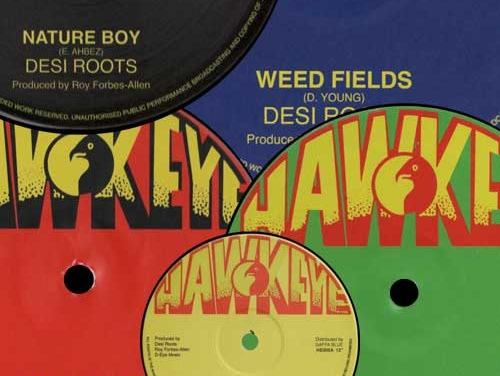 Desi Roots – 5 x 12Inch
