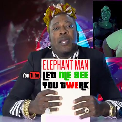 Elephant Man - Let Me See You Twerk