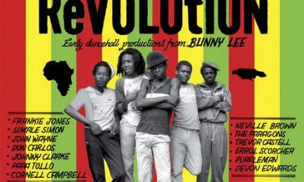 Various – Rubadub Revolution