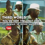 """Third World – You're Not the Only One (ft. Damian """"Jr. Gong"""" Marley) 