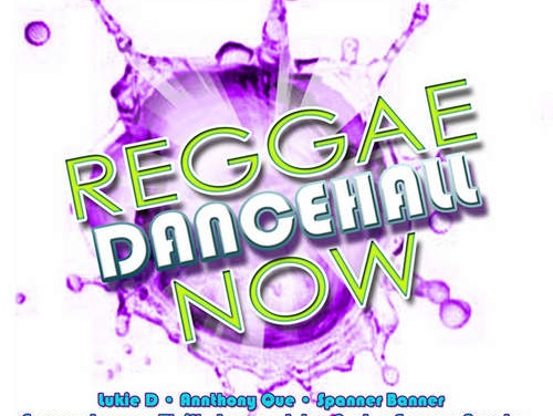 Various – Reggae Dancehall Now