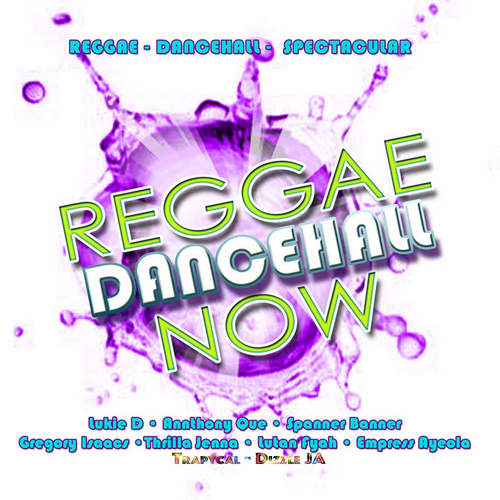 Various - Reggae Dancehall Now