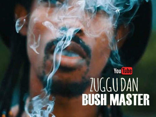 Zuggu Dan – Bush Master | New Video/Single