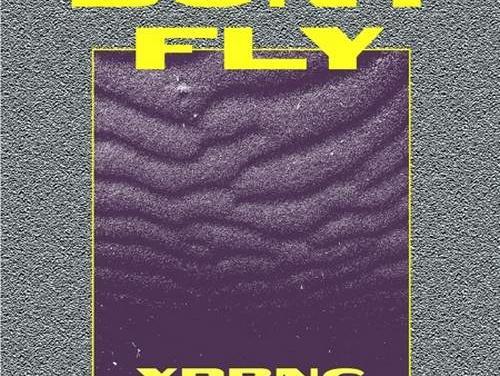 Digital Sham x Bony Fly – Magical   New Single