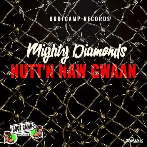 Mighty Diamonds - Nutt'n Naw Gwaan