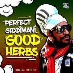Perfect Giddimani – Good Herbs | New Single