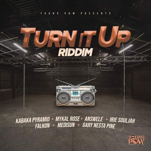 Various - Turn It Up Riddim