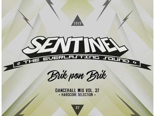Sentinel presents Dancehall Mix Vol. 37 – Brik Pon Brik