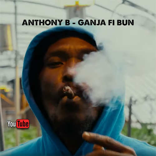 Anthony B - Ganja Fi Bun
