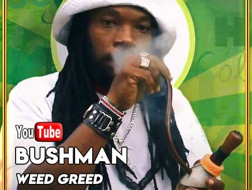 Bushman – Weed Greed | New Video