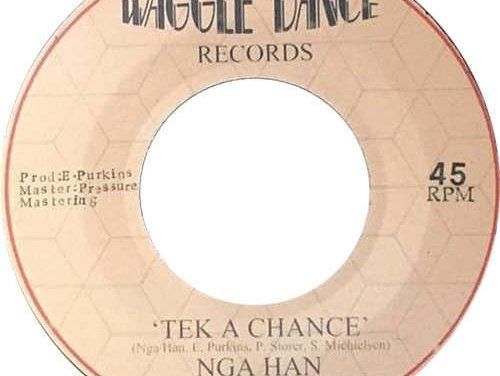Nga Han & The Co-Operators – Tek A Chance   New Release