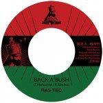 Ras Teo – Back A Bush